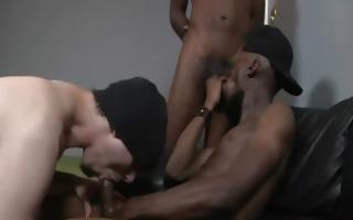 blacks thugs breaking down hard sissy white sissy